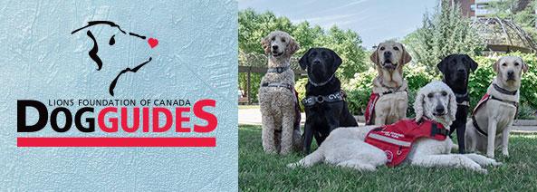 Dog Guides description screen
